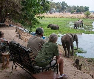 Goliath Safari Camp