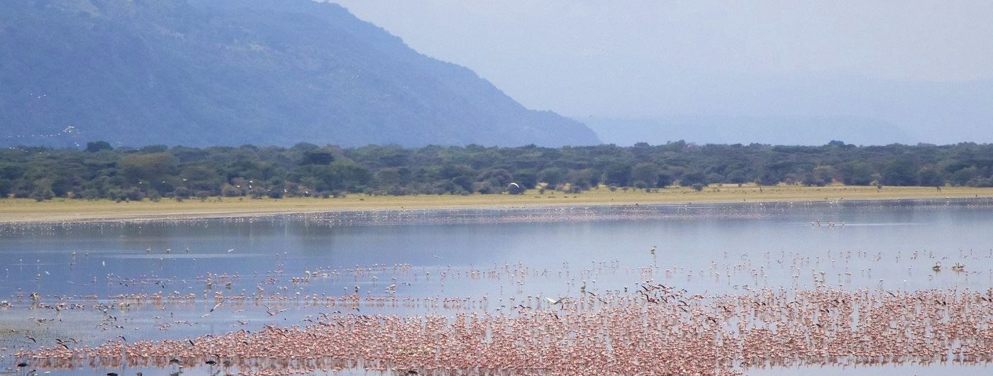 Getty image of Lake Manyara