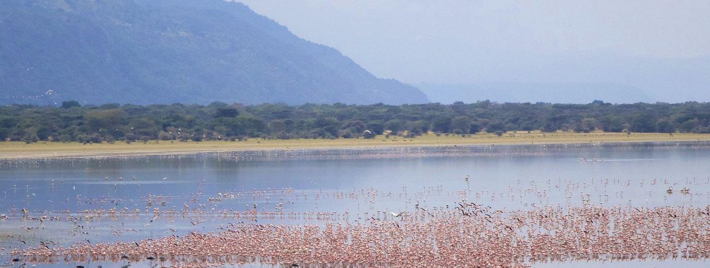 Getty image of Lake Manyara