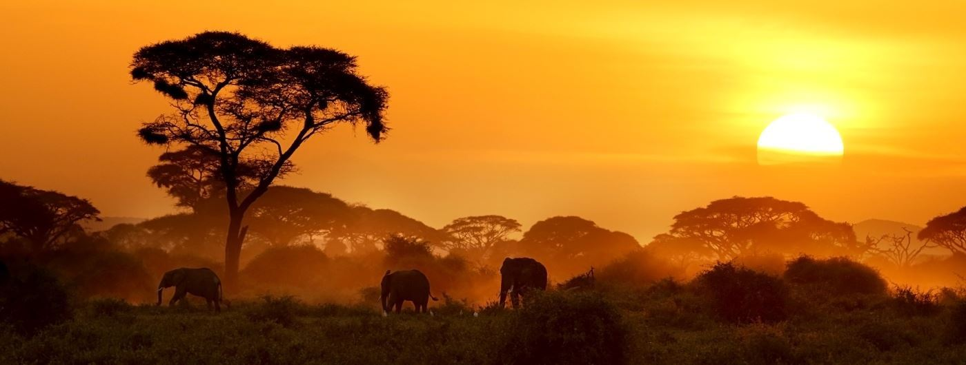 African sunset in Amboseli