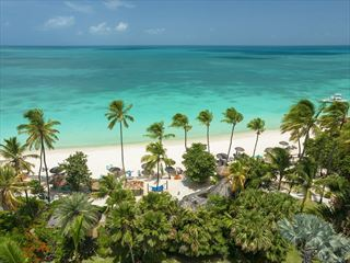- Sandals Antigua and St Lucia
