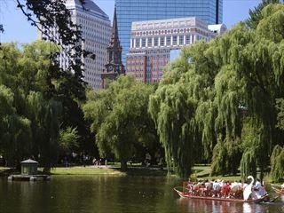 Boston swan boat