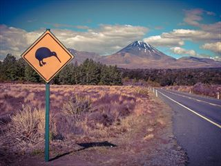 Driving in Tongariro National Park in New Zealand's North Island