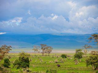 Landscape of Ngorongoro crater in Tanzania