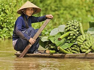 Vietnamese woman rowing her boat in the Mekong River, Vietnam