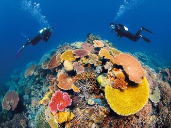 Top 10 scuba diving destinations in the world