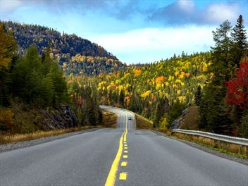 Road tripping Newfoundland & Labrador: Self-drive St. John's to the Great Northern Peninsula
