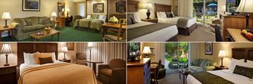 Best Western Plus Pepper Tree Inn, (clockwise from top left): Deluxe King with Twin Sofa, Two Double Bed Room, Deluxe King and King Poolside