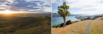 The Canterbury Plains & Coastal Scenery in the city of Dunedin, South Island