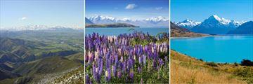 Canterbury Plains, Lake Tekapo & Lake Pukaki