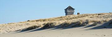Cape Cod seashore