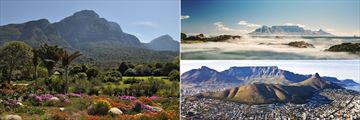 Kirstenbosch Botanical Gardens, Table Mountain and aerial view of Cape Town