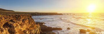 Sun-kissed Carmel Coastline