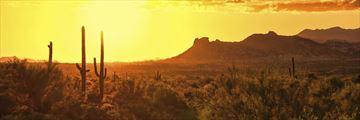 Stunning sunset near Scottsdale