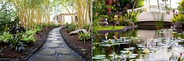 Bamboo Garden Path and Koi Pond at Fairmont Kea Lani Maui