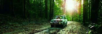 Driving through the forest on Fraser Island