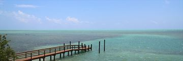 Islamorada jetty, just outside Lazy Days