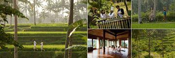 Kamandalu Resort & Spa, Ubad, Activities: Trekking, Cooking Class, Cycling and Yoga