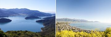 Marlborough Sounds & Kaikoura