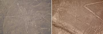 The Hummingbird & Spider Nazca Lines