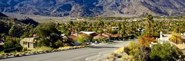 Palm Springs streetscape