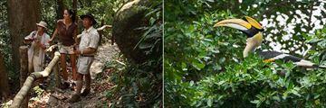 Jungle Safari at Pangkor Laut Resort