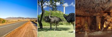 Route 62, Oudtshoorn Ostriches & The Congo Caves