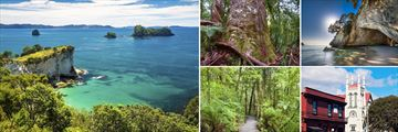 The Corommandel Peninsula, Waipoua Forest & Thames Town Scenery