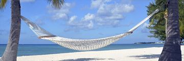 Beach hammock on Grand Cayman's Seven Mile Beach