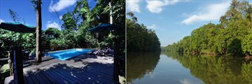 The pool and river at Sukau Rainforest Lodge