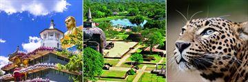 Sri Lankan Temple, Polonnaruwa & Leopard