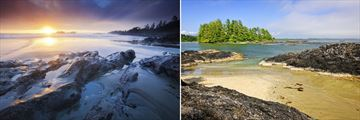 Coastal scenery in Tofino