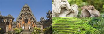 Ubud Temple, Rice paddies and Monkey Forest
