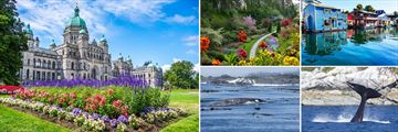 Scenery & Whale Watching in Victoria, Vancouver Island