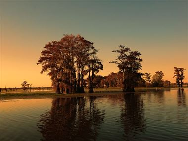 How to experience the best of Louisiana's nature and wildlife