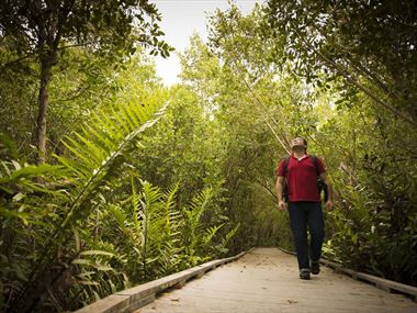 Exploring Fort Myers' enchanting nature trails