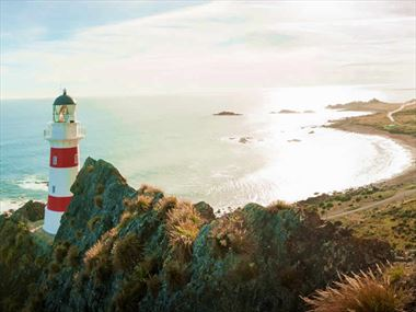 Head out on one of these day trips from Wellington