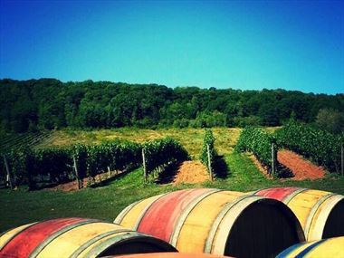 Take a great Nova Scotian wine adventure