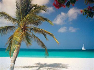 A beginner's guide to Aruba
