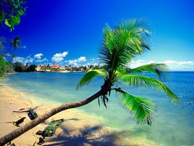 Tobago Beach Holidays