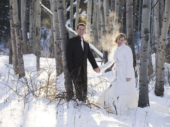 Bride and Groom in snowy Jasper