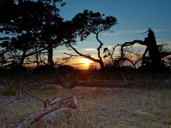 Asilomar Center, sunset from view point