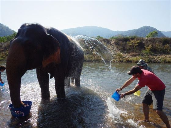 Bath-time at Elephant Nature Park, Chiang Mai