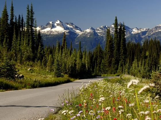 Highway with view of the mountains in Mount Revelstoke National Park