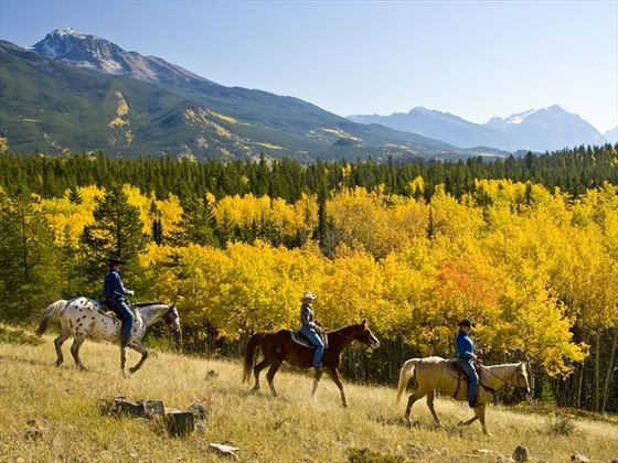 Pyramid Riding Stables, Jasper National Park