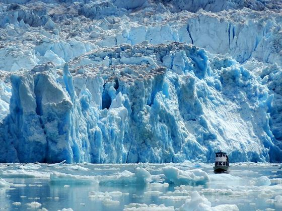 A large boat looks tiny next to an enormous tidewater glacier