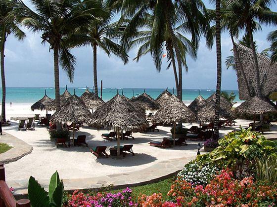 Beachfront loungers at Pinewood Beach Resort and Spa