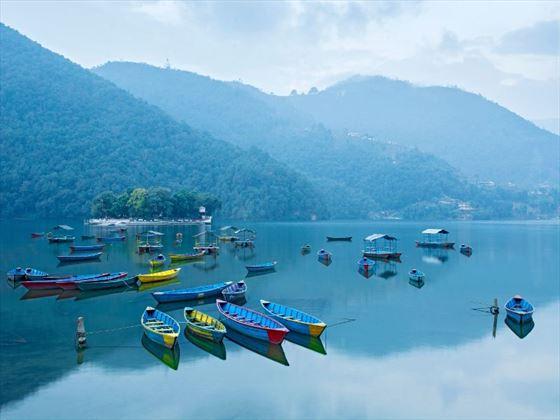 Boats on Phewa Lake