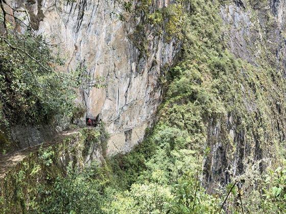 Bridge at Machu Picchu