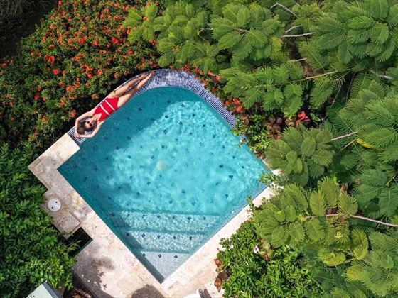 Watersedge Cottage plunge pool at Calabash Cove Resort & Spa